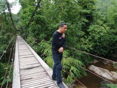 สะพานไม้ผุมากแล้ว ที่น้ำตกเก้าชั้น เดินไม่ดี��าจตกได้