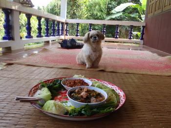 แวะกินข้าวบ้านเพื่��น เจ๊เบลส์ ที่แม่สาย (ข��ร่วมวงด้วยครับ)